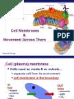 Transport Membran 2