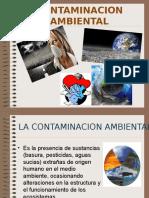 la-contaminacion-ambiental-091023082715-phpapp01.ppt