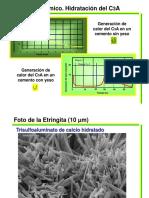 Hidratacion del Cemento Parte II.pdf