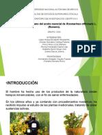 rosmarinusULT protocolo-2