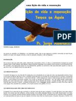 A Águia - Uma Lição de Vida e Renovação - Estudos Bíblicos