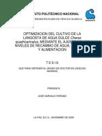 cultivo de langosta.pdf