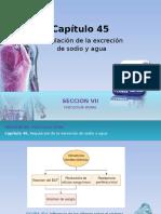 Raff Fisiologia c45 Excrecion Sodio - Copia