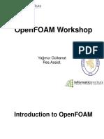 Open foam basic introduction.pdf