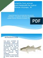 Presentacion Articulo