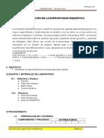 PRACTICA 02 - Demostración de La Especificidad Enzimática