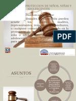 Tribunal de Proteccion de Niños Niñas y Adolecentes.