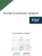 Nucleii Trunchiului Cerebral