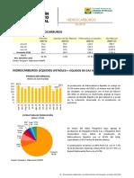 Boletin Estadistico Mensual Hidrocarburos Abril 2016