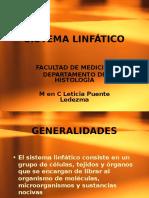 Histología sistema Linfatico