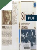 Georg Simmel - O Estrangeiro