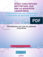 Enfermedad de Von Willebrand y Sindrome de Bernard Soulier