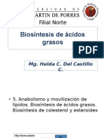 242868988-Biosintesisde-acidos-grasos-ppt.ppt