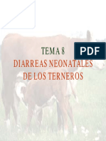 Diarrea de Terneros