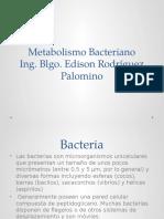 1 metabolismo bacteriano