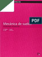 MecanicaSuelos.problemasResueltos