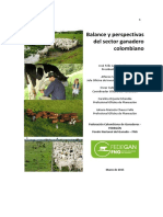 Documento Balance y Perspectivas 2015 Final