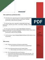 CV Sylvain Arnal