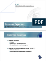 A2 Expert Systems.pdf