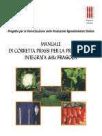MCPP Fragola