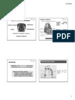 Agentes Cardiovasculares 2016-I.pdf