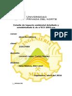 Estudio de Impacto Ambiental Detallado y Semidetallado-DS013-200-EM