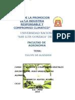 Algodon_trabajo de Algodonero Alex Pillaca