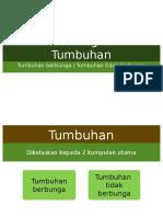 Sistem Pengelasan Tumbuhan