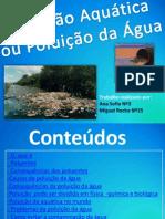 poluição aquatica grupo2