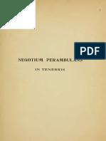 Perdrizet- Negotiumperambulans in tenebris.pdf