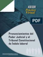 Pronunciamiento Del Poder Judicial en La Materia Laboral