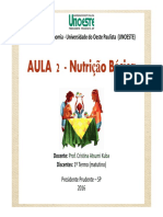 2 SEMANA -  Gastronomia  - Piramide e Guia Alimentar %5bModo de Compatibilidade%5d(1).pdf