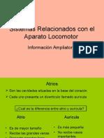 Info ampliatoria Sistemas relacionados con el Aparato Locomotor.ppt