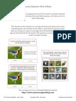 adaptarea animalelor cartonas.pdf