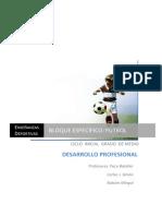 Desarrollo Profesional N1