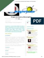 Patologías y Sus Pares Biomagneticos