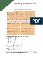 Ejercicio a Casa 2 (Matrices y Cálculo)