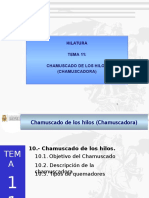 2015-02 TEMA 12 CHAMUSCADO.pptx