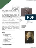 Tardigrada - Wikipedia, La Enciclopedia Libre