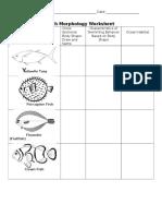 fish morphology worksheet