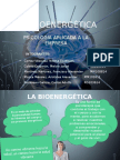presentacion - BIOENERGETICA