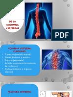 Columna Clinico