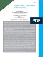 01-Revision Bibliografica Sobre El Sindrome De