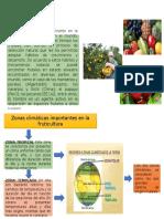 arboricultura.pptx