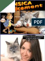 Pisica Medicament