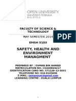 Safety, Health and Environment Management Assignment
