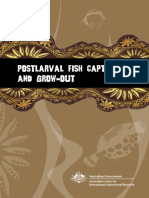 ACIAR - Postlarval Lobster Capture and Grow