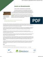 Procte&Gamble Renuncia Ao Desmatamento _ Brasil