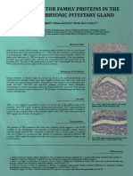 TFF Embryo Pituitary_poster