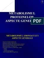 metabolismul-proteinelor-2a